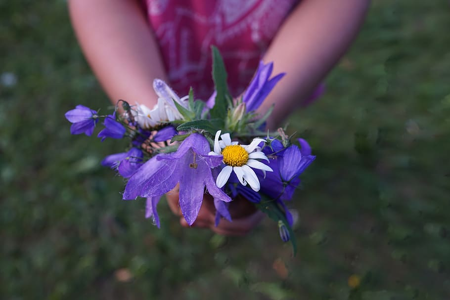 flowerspurple-hands-child-give